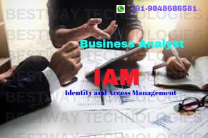 Business Analyst – IAM