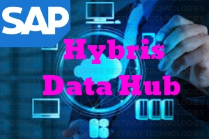 SAP Hybris Data Hub