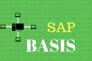 SAP BASIS Administration Online training Hyderabad