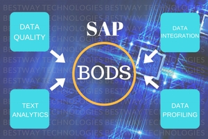 SAP BODS ( Data Services)