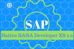 SAP Native HANA Developer XS 2.0