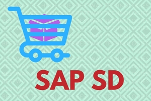 SAP SD (Sales and Distribution)
